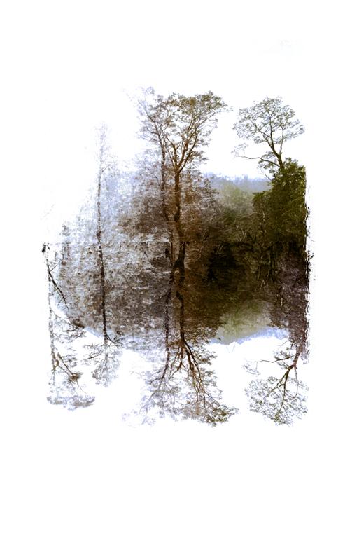lake reflections by iram