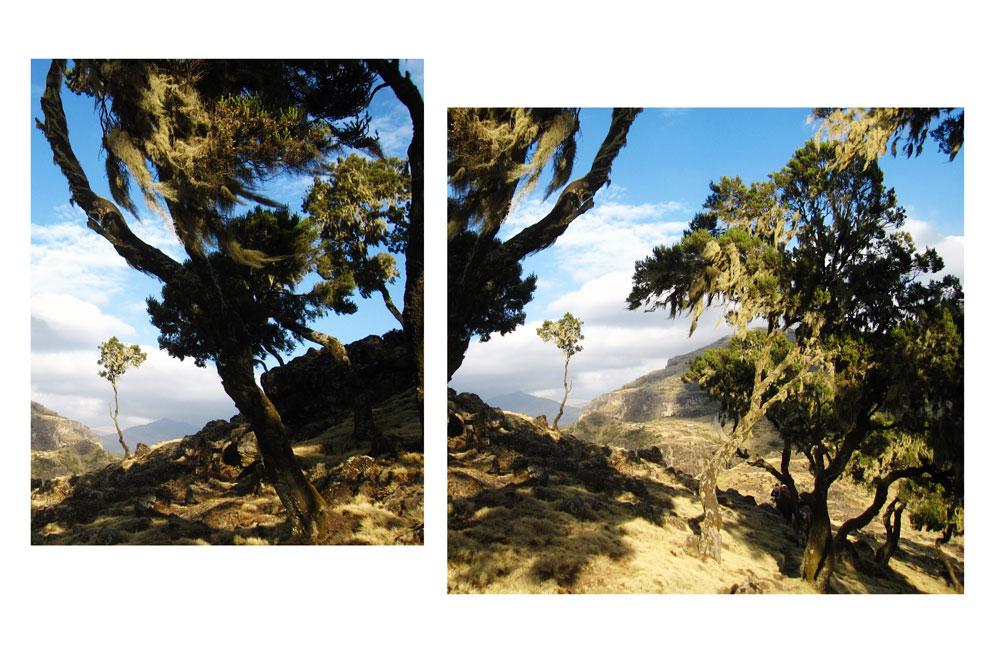 Semion Mountains by iram