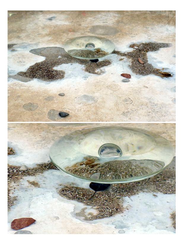 Castelvecchio jellyfish by iram