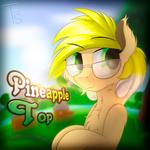 [OC] Pineapple Top