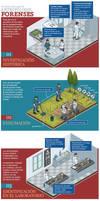 Infografia Forenses by Bonadesign