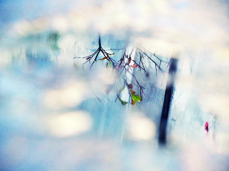 reflecting. by awfultosee