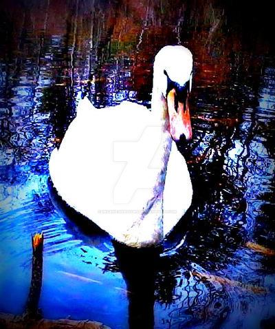 Swan by InsaneShadows
