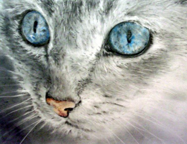 Pretty Little Angel Eyes by SandieBlair