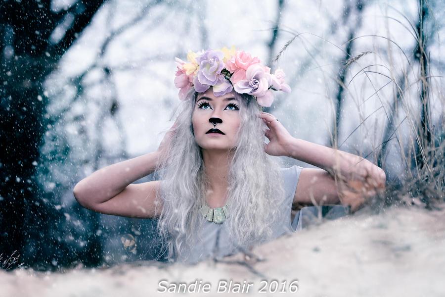 Snow Deer by SandieBlair