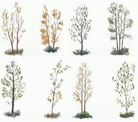 Trees studies/sketches