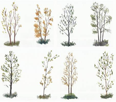 Trees studies/sketches