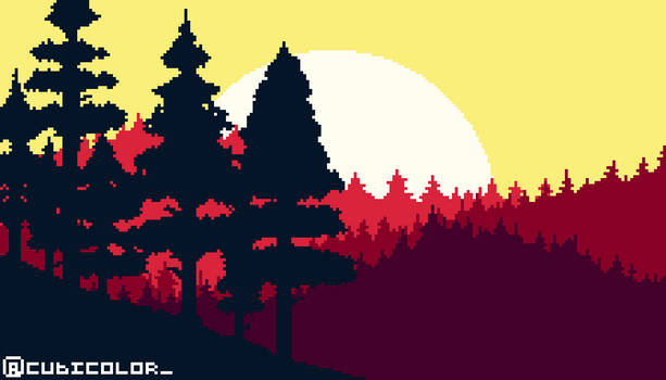 Sunsets Pines