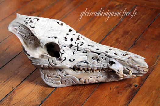 Wild boar skull sculpted