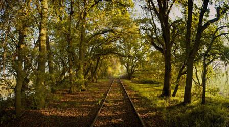 Railroad Wanderings by SkylerBrown
