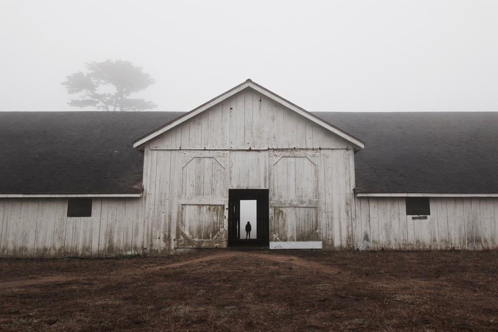 Foggy Farm by SkylerBrown