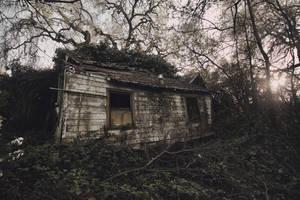 Swamphouse by SkylerBrown