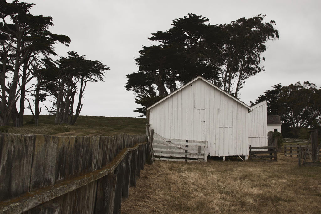 Pierce Point Ranch 2 by SkylerBrown