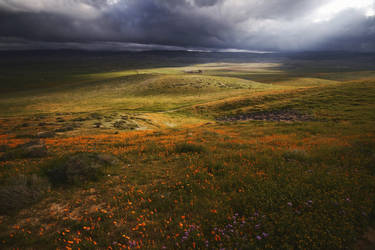 Antelope Valley by SkylerBrown