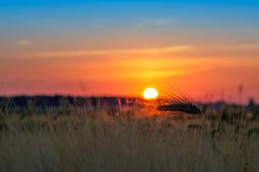 sunrise by EdinaBaltas