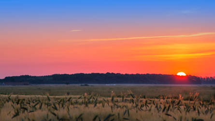 sunrise over the field by EdinaBaltas