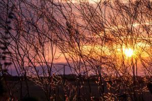 lights before sunset by EdinaBaltas