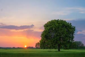 sundown beauty by EdinaBaltas
