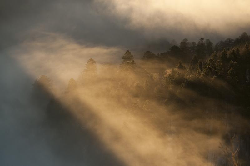 At dawn by JeremyLichte