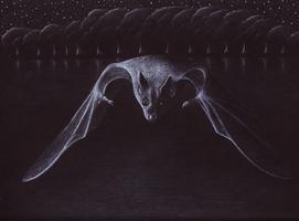 Glide by shanskala