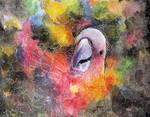Nebula Cacatuidae