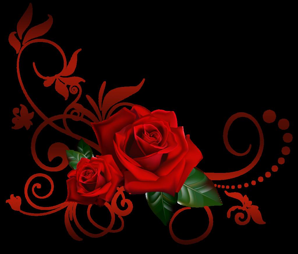 roses decor by Lyotta