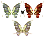 Wings of the fairy butterfly