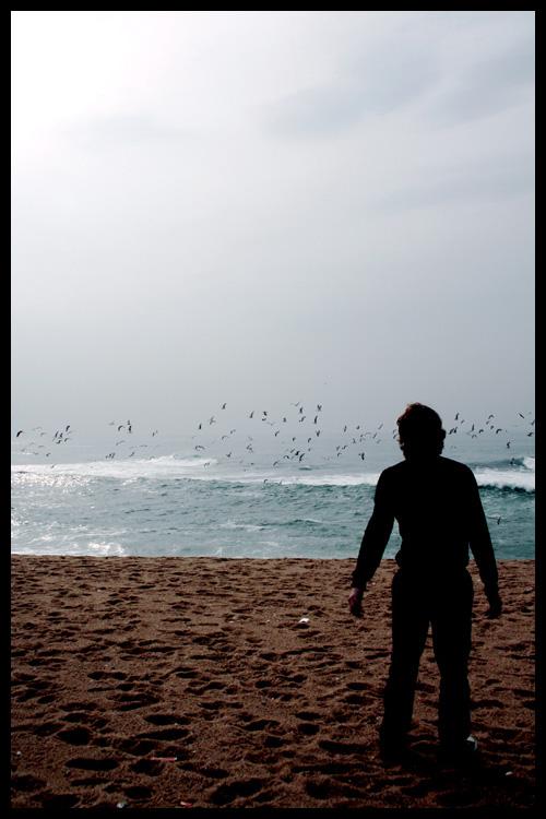 sea.me by i-play