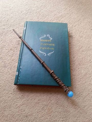 My Homemade Potions Book And Wand by casio1241