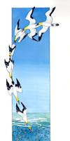 Australasian Gannet by melanippos