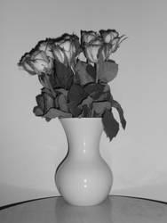 Flowers I got on my birthday :) by LittleGingerSnap