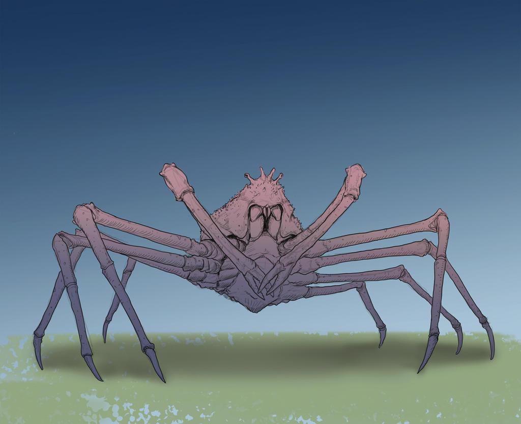Japanese spider crab by WillWarburton