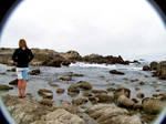 alex likes the ocean.