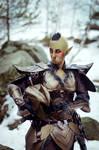 Borgath Steel Heart Cosplay I