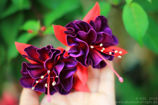 :: flouncy flowers :: by Phantom-of-light