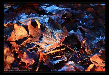 :: december light :: by Phantom-of-light