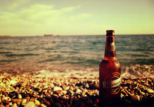 Beer and The Sea