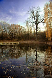 Autumn Moment II by FLixter
