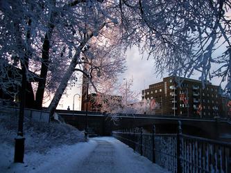 Finland III