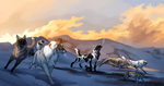 Tokota - Coyote Hunt - Final Breath