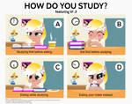 How do you Study?