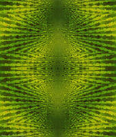 Green and Yellow Enantiomorph by StephenL