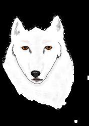 The Wolf by Harajuku-2010