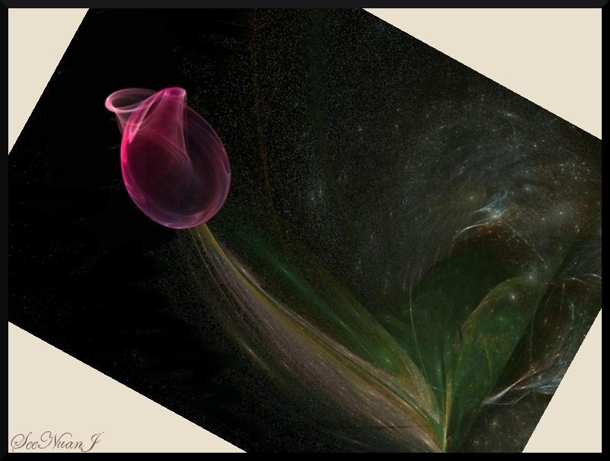 Tulip by SeeNuanPaper