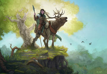 Dungeons and Dragons - Half Elf Ranger