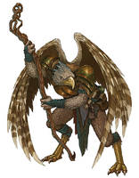 Dungeons and Dragons - Aarakocra Sorcerer