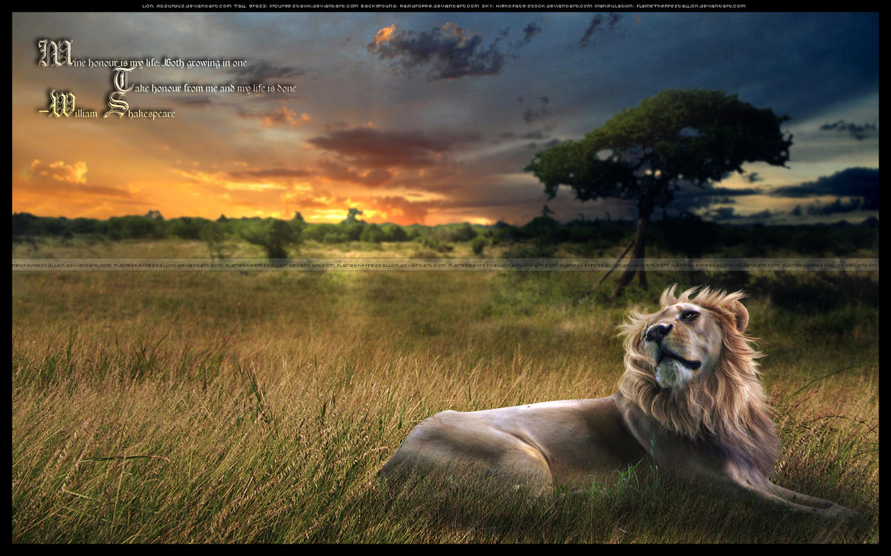 The Pride of a Lion by AlexLibby on DeviantArt