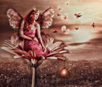 Princes Butterfly