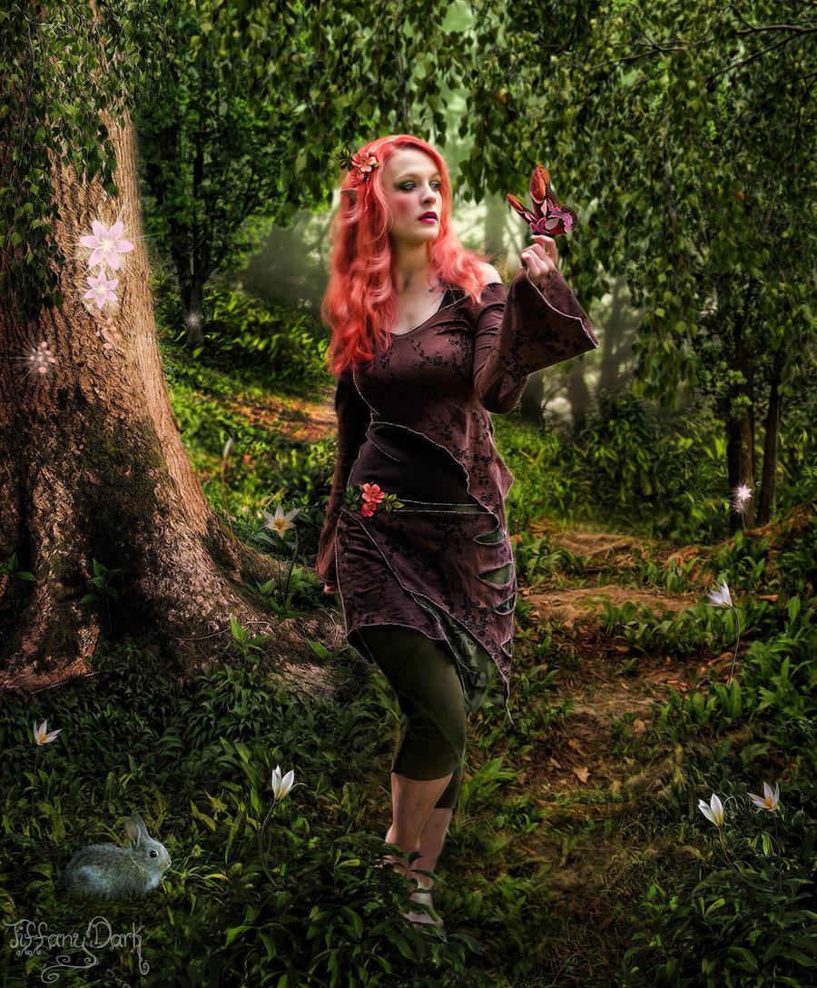 Forest of elves