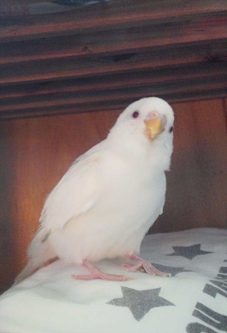itiharasan's Profile Picture